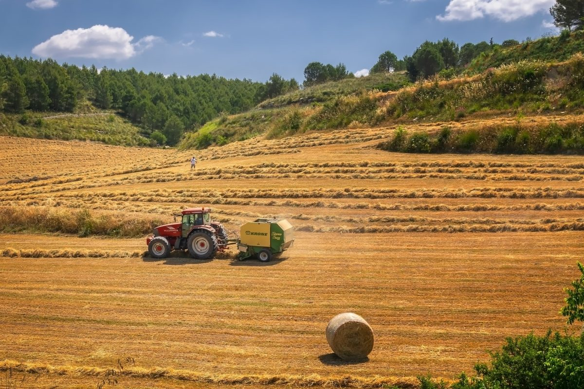 carbon and agriculture