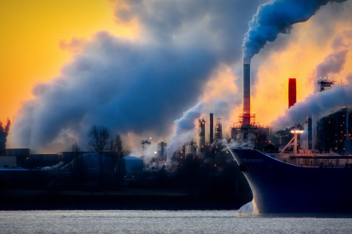 image of carbon storing